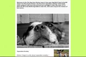 free dog newsletter