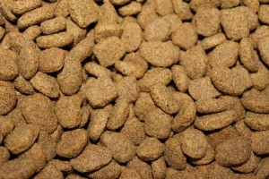meat in dog food